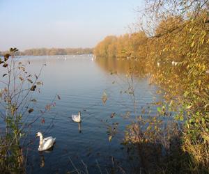 kingsbury-water-park